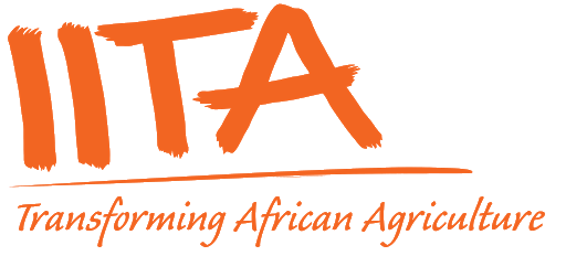 Data Manager, Breeding at the International Institute of Tropical Agriculture (IITA)