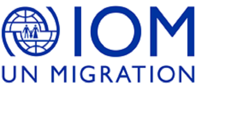 Data Collector Team Lead NAA at the International Organization for Migration (IOM)