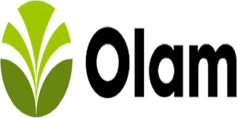 Business Analyst at Olam Nigeria Limited