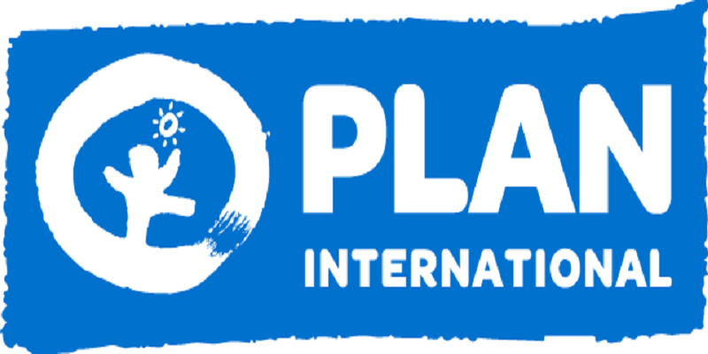 Consultant – Case Management Officer (Maternity Cover) at Plan International
