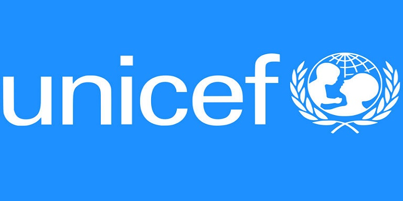 International Consultant – Develop Child Protection Sub-Sector at the United Nations International Children's Emergency Fund (UNICEF)